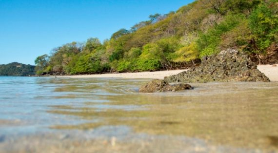 Trip Advisor Ranks Tamarindo and Avellana Beaches in Top 10
