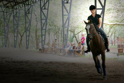 The Equestrian Life in Costa Rica. Horse lovers in Guanacaste.